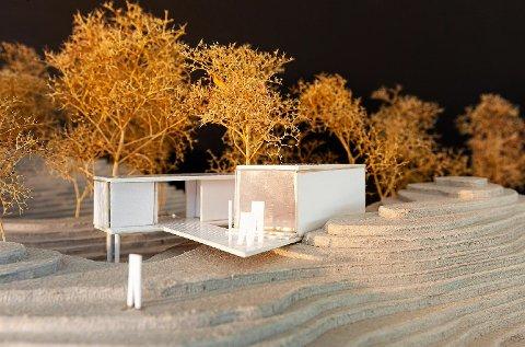 MODELL: Slik har arkitekten modellert den nye hytta. Det er firmaet Stein Halvorsen Arkitekter som har sendt inn anmodningen om forhåndskonferanse til kommunen.