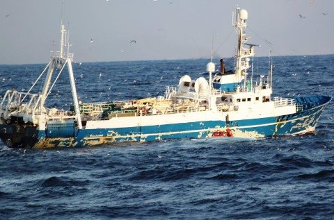 ULOVLIG FISKE: Tråleren Kleifaberg her fotografert fra KV Sortland under inspeksjonen torsdag. Langs skipssiden kan man se Kystvaktens lettbåt.