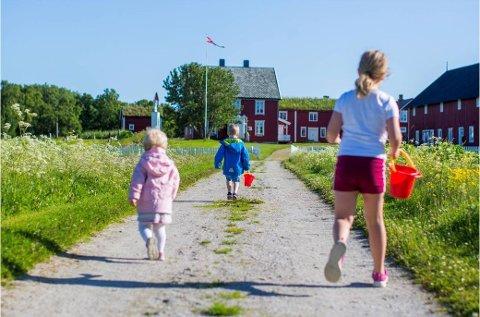 IDYLL: Sommeridyll på Tranøya, Senja