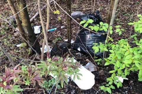DUMPET SØPPEL: En leser fant denne ladningen med søppel som var sumpet i Sommerrovegen på Gjøvik.