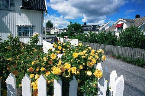 BEKKEGATA er en av de gamle gateidyllene på Langestrand. Den kranses av små gamle trehus og mengder av prydbusker, som velter ut over stakittene.