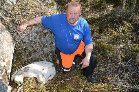 FORBANNET: – Jeg ble forbannet da jeg fikk se dette, sier Jan Tore Nedgården, her med huskyen som var slengt igjen ved steinen.