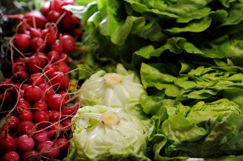 Økologisk mat skaper store diskusjoner.