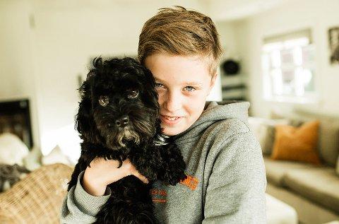 Snart er 200.000 kjæledyr i Norge forsikret.