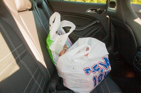Det er ikke mer enn én time i bilen som skal til før sommermaten kan være en sykdomskilde. (Foto: Pressebilde/ANB)
