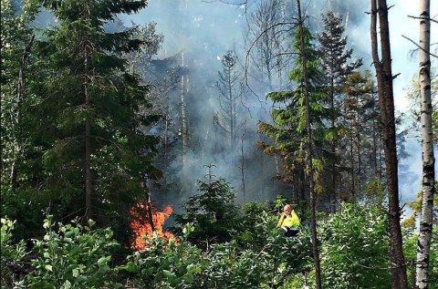 Dette er tredje brannen i Brekke-området på kort tid.