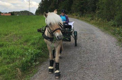Christin Pettersen vil ha svar på hvor man kan ferdes med hest på Nøtterøy.