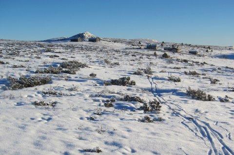 Store delar av Valdres har fått veldig lite nedbør i vinter, både i desember og januar, likevel er det fullt muleg å gå på ski i fjellet, som her ved Kristianstølen i Yddin-området.