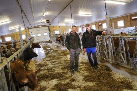 I NYFJØSET: Far Ivar (til venstre) og sønnen Jørgen i det nye ammekufjøset, som er bygd av tømmerelementer. Foto: Tonje Hovensjø Løkken