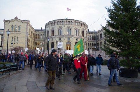 Fra den første demonstrasjonen mot klima- og miljøministerens vedtak om ikke å felle fire ulveflokker i Hedmark.