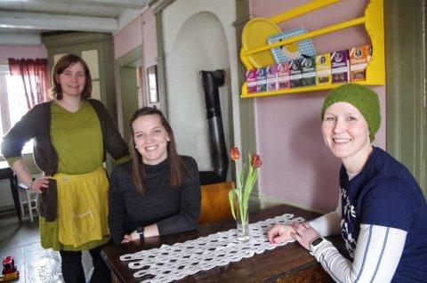 PLANLEGGER FESTIVAL: Siste helga i august blir det jazzfestival i Bortistu Neby, der Hege Fossum (til venstre) og Anette Stubberud (til høyre) er kaféverter. I midten sitter Eirin Lien, leder i Tynset Jazzklubb.
