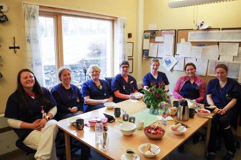 FEIRING: Hjelpepleier Torill Mikkelsen, nummer tre fra venstre, er opptatt av å være blant sine egne, og insisterer på kollegialt vis på å sitte midt i flokken når denne buketten ansatte i hjemmetjenesten i Tynset skal være med på bilde. Ytterst til venstre sitter helsefagarbeider Kjersti Tamnes Svendsen, sammen med sykepleier Susanne Raabe. Til høyre for Mikkelsen ser vi spesialhjelpepleier Ellen Marie Grøtli, og deretter sykepleierne Anne Goro Bjørkeng,  Anita Godtland og Julie Skogsrud Jordet.