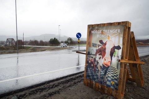KUA PÅ PLASS: Rundkjøringa i Røroskrysset på Tynset har fått selskap av ei ku og budskapet om at Norge trenger bonden.