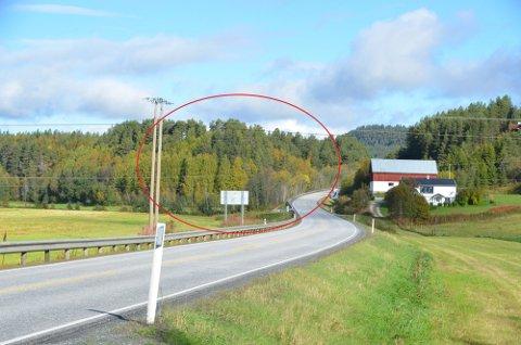 Østerdalsporten Nord er regulert til plasskrevende næring i Tunndalen, men politikerne er uenige om veien videre.
