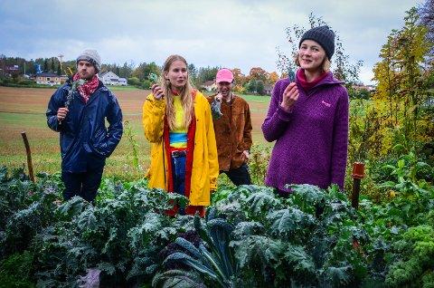 KNASKER KÅL: Kollektivet har en egen kjøkkenhage der de dyrker forskjellige grønnsaker og urter. Kålen er de spesielt godt fornøyde med. (f.v) Magnus Nickelsen (26), Anneli Rystad Aune (23), Adrian Engebø (21) og Maren Vedvik Dammen (23).