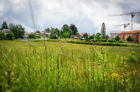 SKAL BYGGES UT: Jordet ved Nordbyveien på Solberg skal bygge sut med 75 nye boliger fordelt på rekkehus og lavblokker.