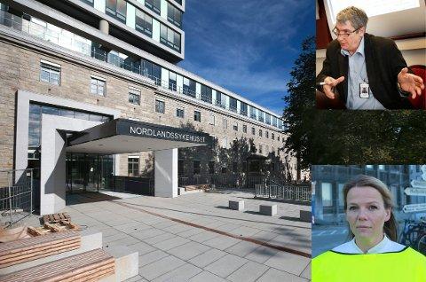 Nye Nordlandssykehuset åpner med ny inngang.Parken får ny utsmykning. Kunstner:  Bo Bisgaard