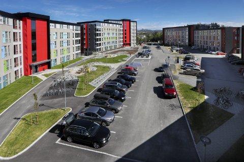 Tomta der studentparken ligger er på hele 15,7 mål. Totalt utgjør byggene mellom 18.000 og 19.000 kvadrat.