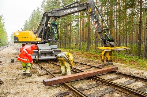 SVILLEBYTTE: Mannskaper fra NRC Rail bidrar til ny og bedre skinnegang på Krøderbanen. Foruten en ombygget gravemaskin til selve svillebyttet handler dette om mye manuelt arbeid.