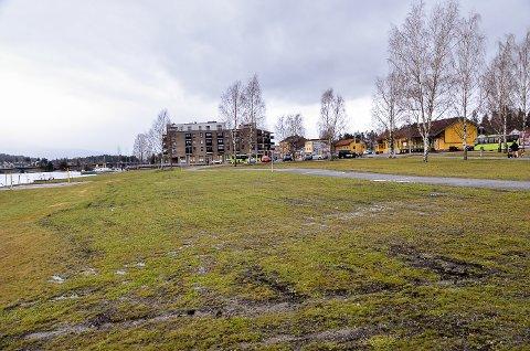 MILDT: Det var ikke mye som minnet om vinter i Vikersund mandag denne uken.