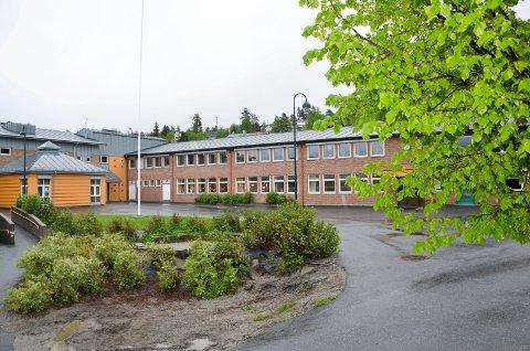 LEGGES NED?: Politikerne i Modum skal ta stilling til om de vil jobbe videre med ny skolestruktur i Åmot.