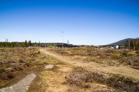 HER VIL DE BYGGE: På denne hogstflaten, rett sør for Skredsvikmoen barnehage, ønsker Geithus IL å etablere sitt nye kunstgressanlegg for fotball.