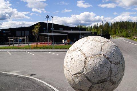 GÅR VIDERE: Det skal jobbes videre for å starte en reguleringsplan med sikte på å bygge kunstgressbaner på Skredsvikmoen i Geithus.