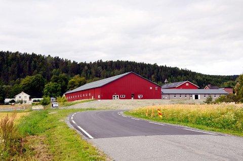 VILLE HATT DET HER: Nabo Thor Erik Jelstad hadde foretrukket at fjøset ble bygd nærmere de eksisterende byggene på Buskerud gård.