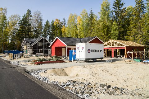 BOLIGBYGGING: Kryllingene forsøker å friste nybyggere til kommunen med gratis byggesaksbehandling og fritak fra eiendomsskatt i ti år. Dette bildet er tatt på Haraldsrudhagan i Vikersund som en illustrasjon til denne saken.