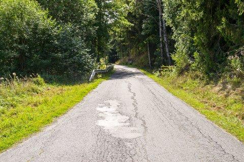 80 KM/T: Kaggefossveien er en av mange lokale bygdeveier som kan få ny fartgrense etter politisk behandling i oktober.