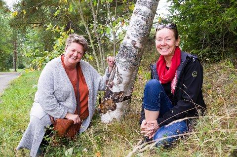 KUNSNTERE: Gry Monica Simonsen (t.v.) og Mette Elisabeth Holtet er kunstnerne som har funnet naturens eget bilde i denne trestammen, og hjulpet det på veien med 55 andre knøttsmå kunstverk.