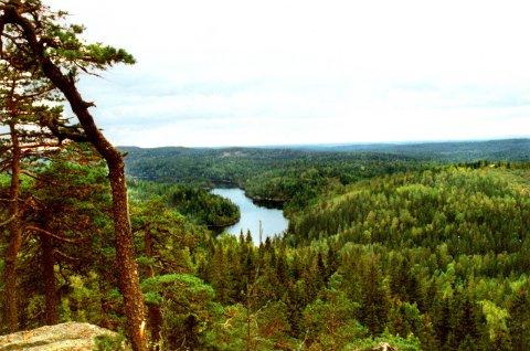 Utsikt fra Tonekollen mot Mosjøen.