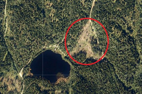 Hogstflaten nord-øst for Øvre Auretjern er på 61 dekar.Markaforskriften sier at maks størrelse på hogstflater i Østmarka kan være på 30 dekar.
