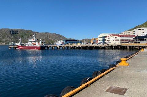 SOMMER: De siste dagene har det vært nydelig vær på Magerøya, men cruisetrafikken uteblir for det meste.