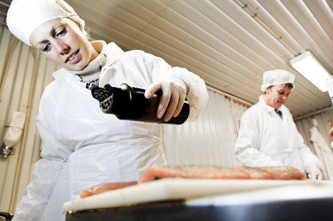 Først røykt, så marinert: I produksjonslokala til Svanøy Røykeri blir det eksperimentert med mange slags smakar, alt frå mildare konjakk til kraftigare kvitløk. Pressefoto: David Zadig