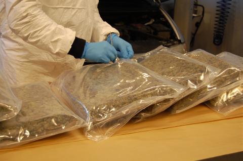 Tollerne fant 15 kilo marihuana i et hulrom under gulvet i en polskregistrert bil.