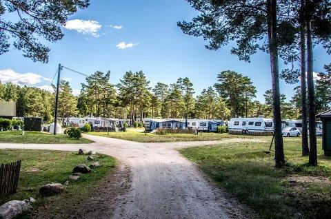 Bevø camping kan bli historie: Bevø har lange tradisjoner, dette bildet er noen år gammelt. I år er det over 170 vogner her. Nå er spørsmålet hva som skal skje med campingplassen fra 2020, når leiekontrakten har gått ut.