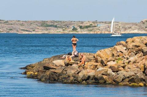 BADING: Nå er det tid for å bade. Varmnest i vannet akkurat nå er det på Hankø.