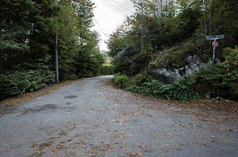 Dramaet fant sted på en nokså smal vei som går gjennom et villastrøk i Tømmeråsen på Paradis