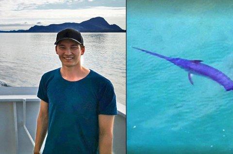 Sverdfisk: Tom Fredrik Walberg fikk seg en skikkelig overraskelse da han så fisken.