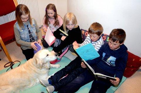 Prosjekt lesehund: Mathilde, Victoria, Tea, Syver og Odin er ikke seine om å ta opp leseboka og formidle dagens lekse til golden retriever Helga.