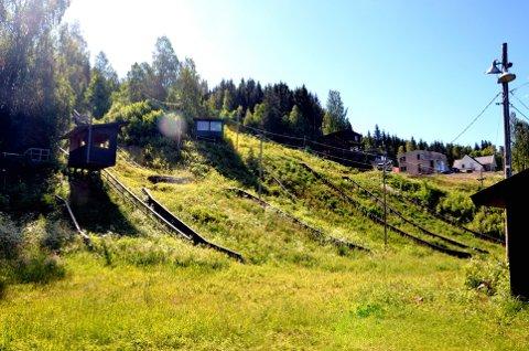 Helårs aktivitetsanlegg: Søre Ål idrettslag har i flere år vært en pådriver for å få til dette i Engesvea. Foto: Karen Bleken