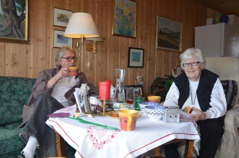 Per Jarle Dyrud og Gerd Thordis Dyrud får denne uken prøvd saken i Sør-Gudbrandsdal tingrett.