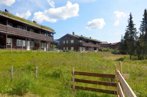 Planene om å bygge fire nye bygninger for utleie i på Skeibo møter motstand.