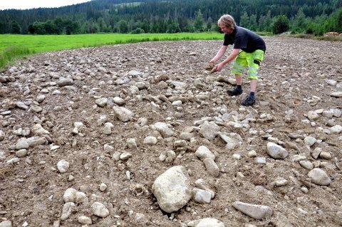 På det mest steinrike feltet kjørte Bjarte Nes bort 1000 kubikk på tre mål. – Den andre jorda jeg skal dyrke er mye finere, forsikrer han.