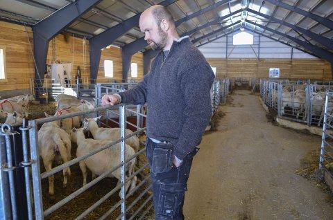TOK OVER FAMILIEGÅRD: Jon Snellingen og kona overtok gården etter Jons kusine for tre år siden. Nå har de investert i nytt sauefjøs med plass til 400 sauer. Det er kjøtt og ull Snellingen satser på.