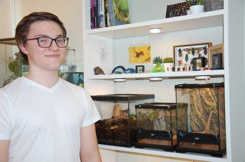 SPESIELT DYREVALG: Emil (18) har et eget rom i huset på Jaren med flere forskjellig type insekter. Han syns det er veldig spennende å se og lære om atferden deres.