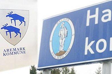 FORTSETTE ALENE: Det vil både Halden og Aremark. Halden sier nei til Aremark, men er positive til nye forhandlinger hvis situasjonen endrer seg. Det skrives det i kommunestyrevedtaket fra Halden i juni i år. Illustrasjonsfoto