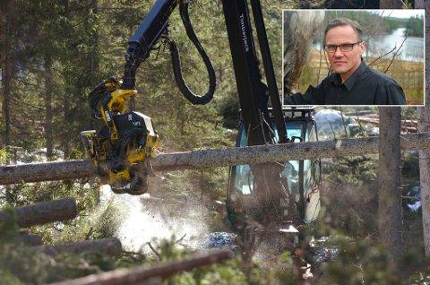ØDELEGGER: – Moderne hogst med store maskiner ødelegger det komplekse livet som befinner seg i skogbunnen. En neve jord fra skogen inneholder et høyere antall liv enn det er mennesker på kloden, skriver Dag Ronny Pettersen.