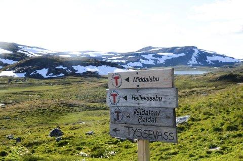 Illustrasjonsfoto. Hardangervidda. Arkivfoto.